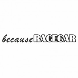 Because Racecar