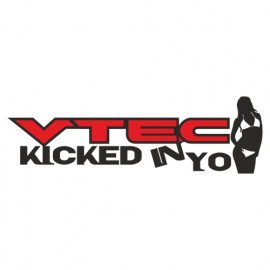 Vtec kicked in yo Babe 2 color